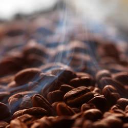 Freshly Roasted Coffee by Z740