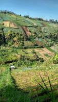 Tawangmangu Panorama (6)