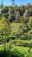 Tawangmangu Panorama (10)