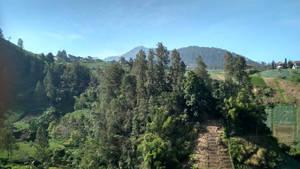 Tawangmangu Panorama (13)