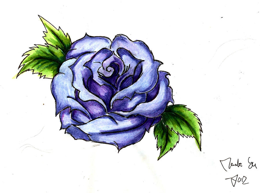 Blue Rose Drawing Pictures To Pin On Pinterest