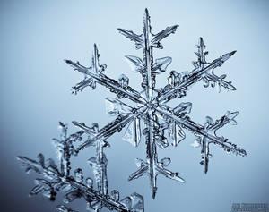Snowflake - 2
