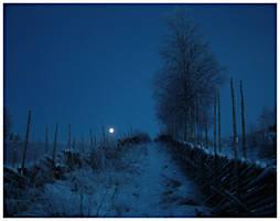 Snowy Path by ak87