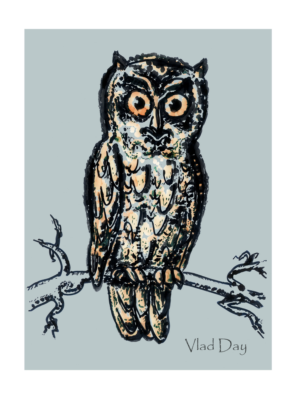 Owl by anyword