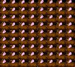 Wall of Rabbits