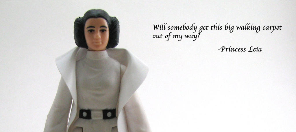 Princess Leia Organa Quote by duffbeerz
