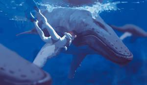 134/365 Underwater