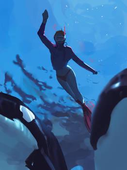152/365 Orca