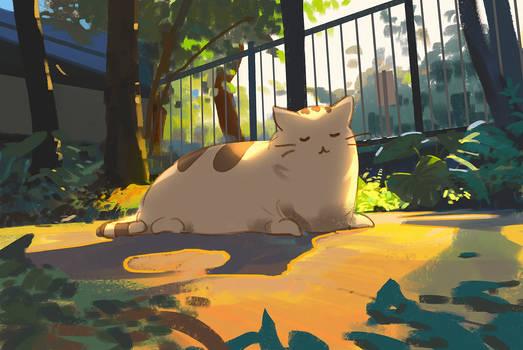320/365 sunbathing pusheen