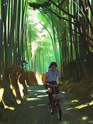 Bikeride by snatti89