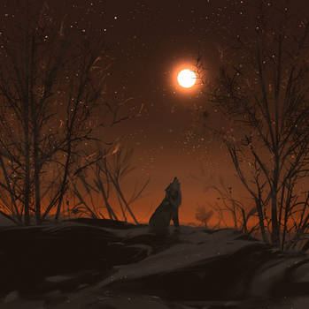 Howl of the wolf by snatti89