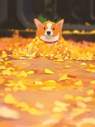 Autumn corgi 1