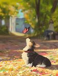 Autumn corgi 2