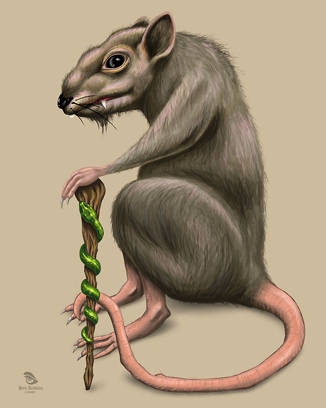 how to draw a dead rat