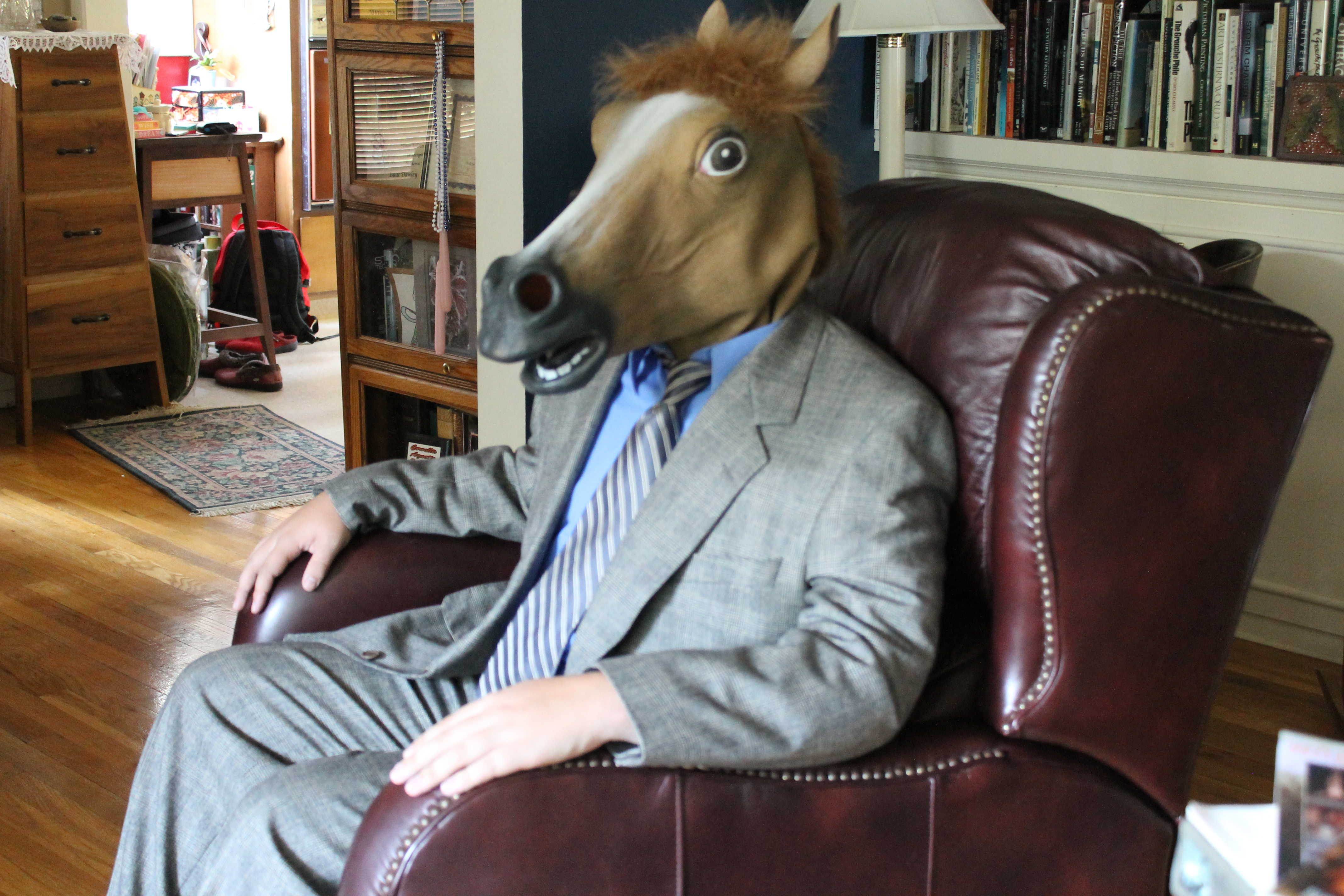 classy_horse_by_team_horse-d5hxoh4.jpg