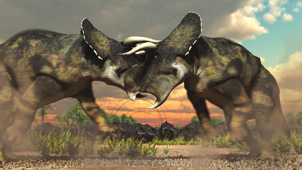 Nasutoceratops by PaleoGuy
