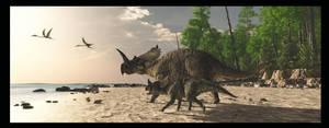 Centrosaurus by PaleoGuy