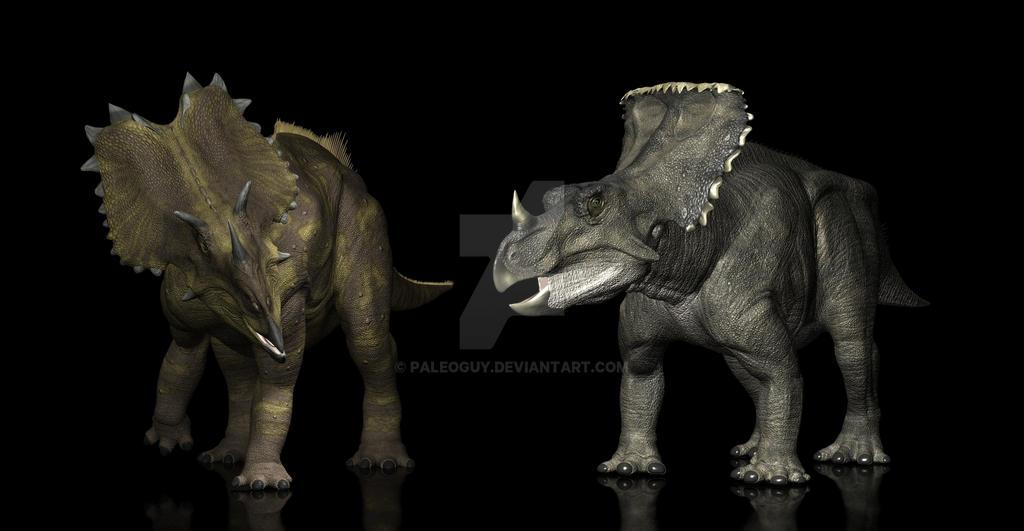 Utahceratops Vagaceratops