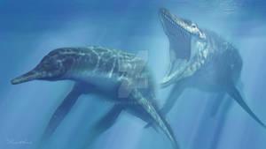 Tylosaurus Dolichorhynchops