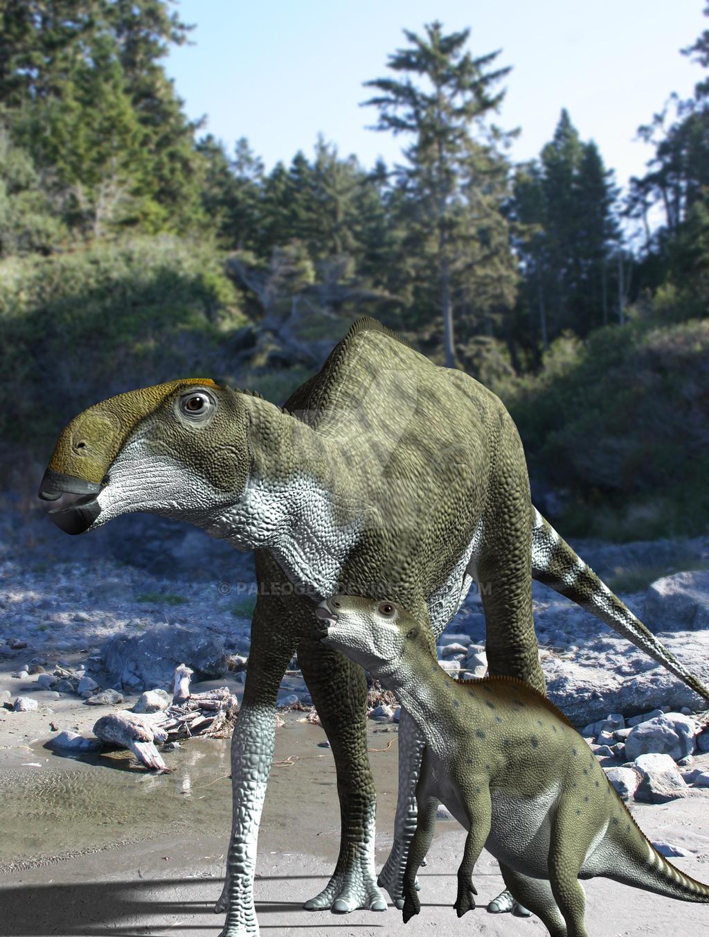 brachylophosaurus - photo #17
