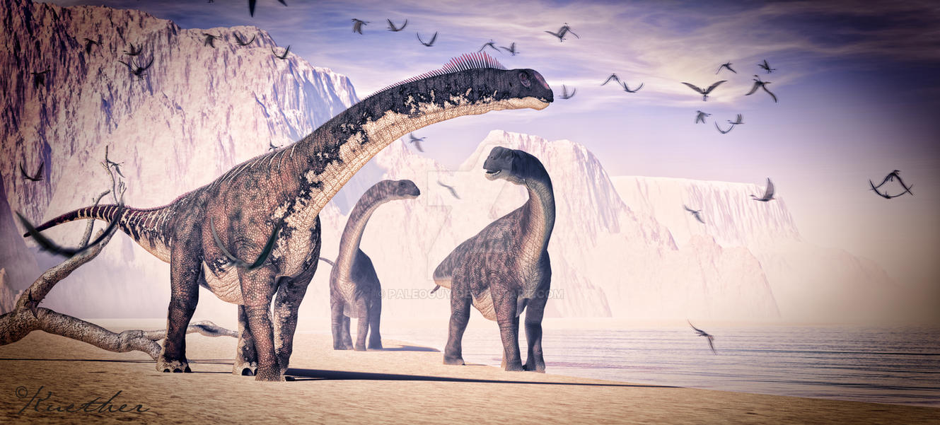 Camarasaurus by PaleoGuy