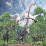 Omeisaurus, Gasosaurus
