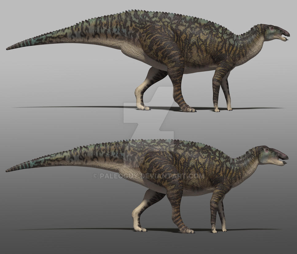 Edmontosaurus regalis - Feedback Requested by PaleoGuy on DeviantArt