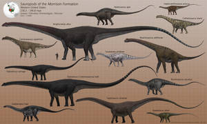 Sauropods of the Morrison Formation