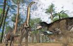 Brontosaurus, Allosaurus