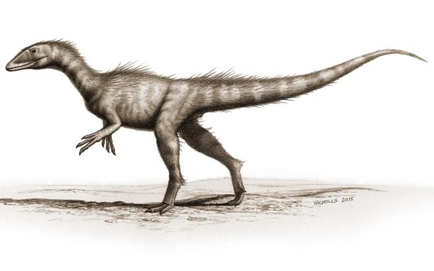 Dracoraptor 3554576b by PaleoGuy
