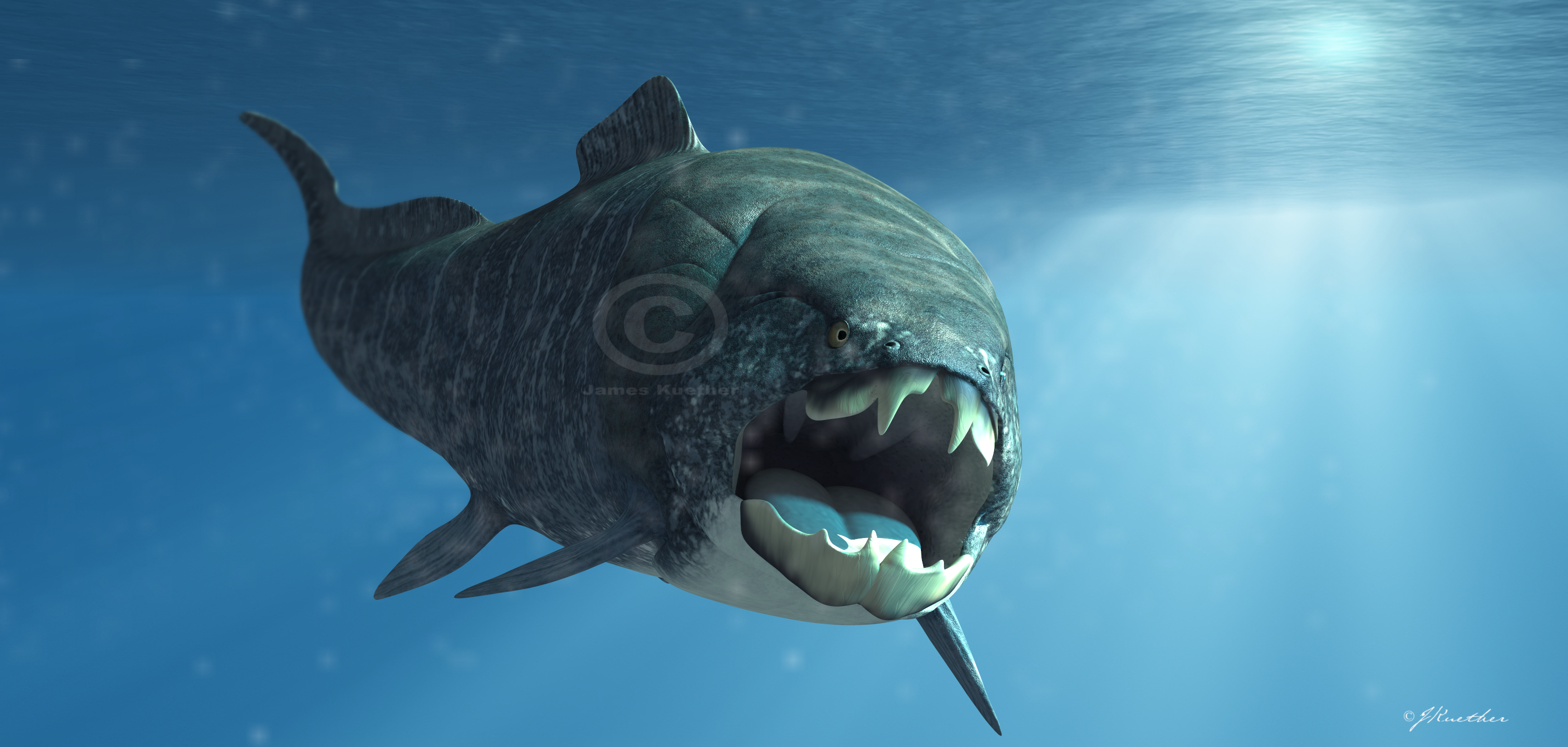 Dunkleosteus by PaleoGuy on DeviantArt