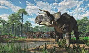 Nasutoceratops and Gryposaurus