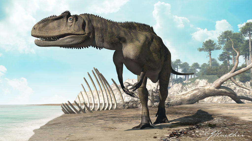 Metriacanthosaurus Metriacanthosaurus by ...