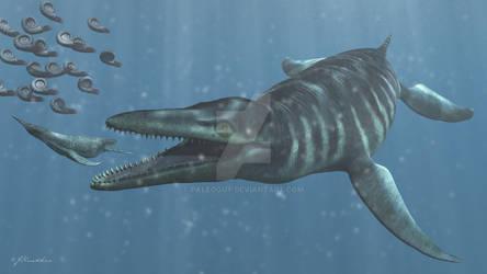 North America's Pliosaur: Megacephalosaurus