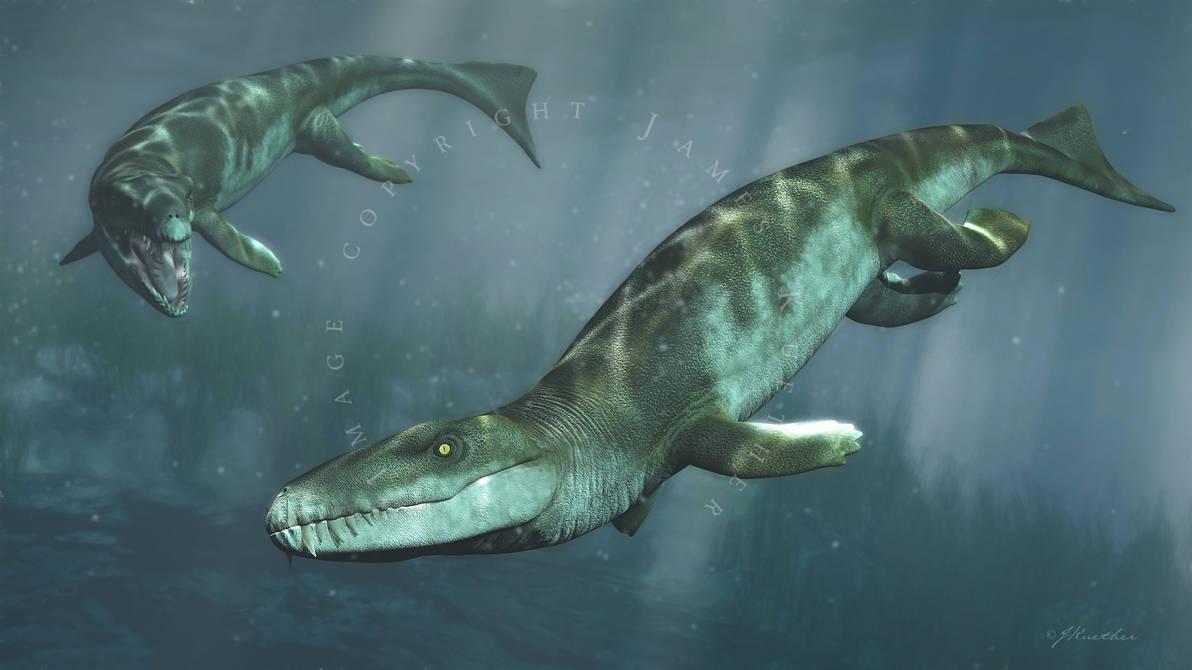 Dakosaurus