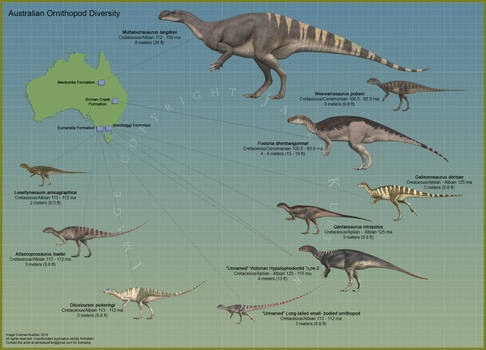 Australian Ornithopod Diversity