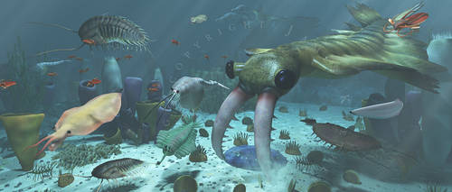 Life on Earth: Cambrian: Burgess Shale