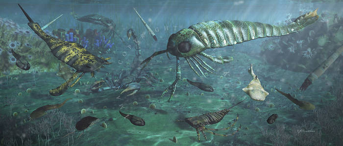 Life on Earth: Late Silurian: Various Formations
