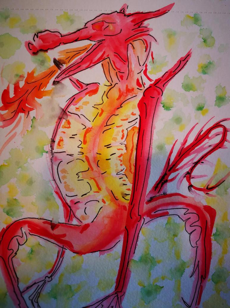 dragon by poggenpohl8