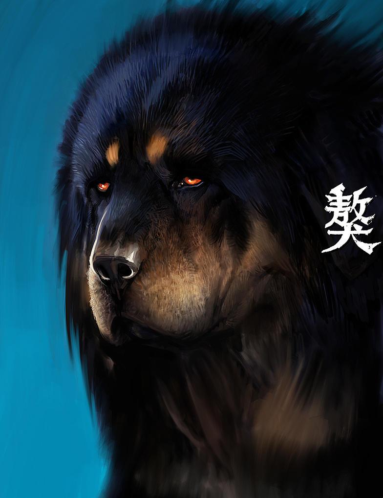 White Tibetan Mastiff Qritiq