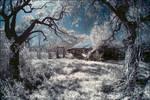 old barn IR