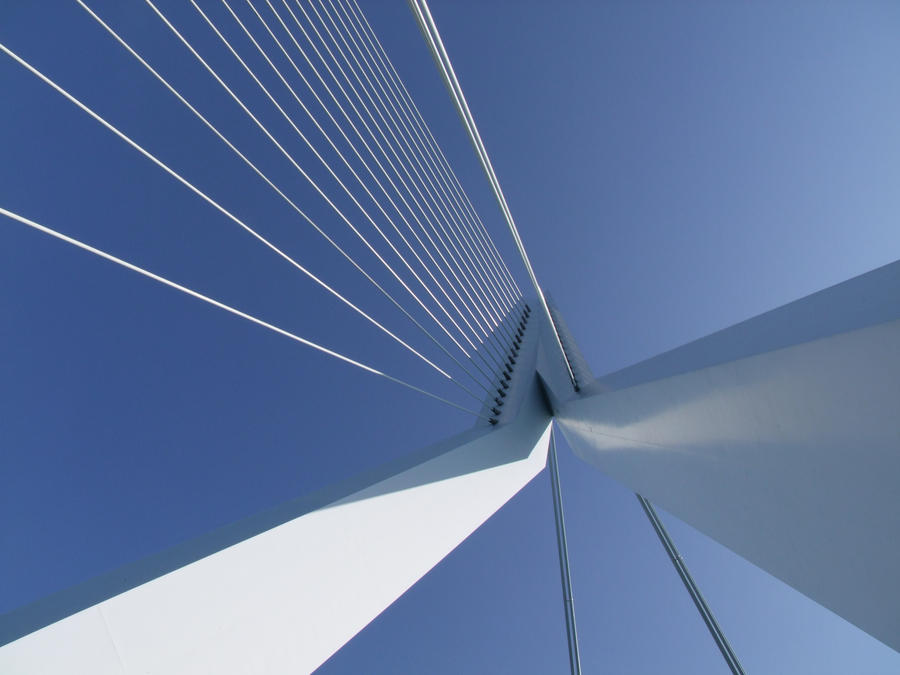 Erasmus Bridge. by T1sup