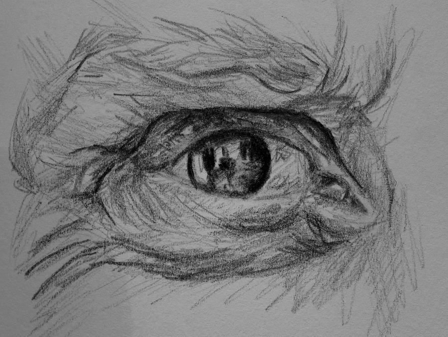Not another eye. by Abatwa-Oolie