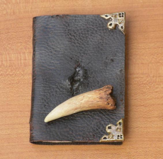 Horcrux Diary- Miniature by bones-sickle