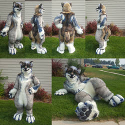 Zener - Realistic Full Fursuit by WeaselsOnEasels