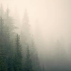 misty mountain weather 9 by JasonKaiser