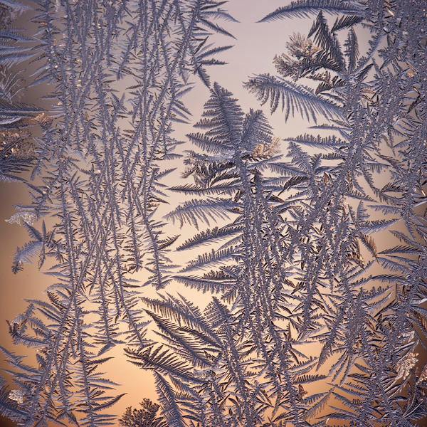 frost 119 by JasonKaiser