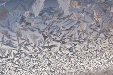 frost 121 by JasonKaiser