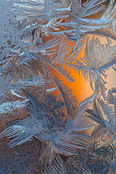 frost 128