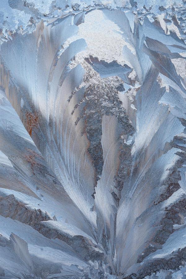 frost 131 by JasonKaiser